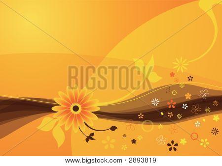 Orange Summer Flower Background