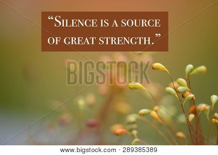 Inspirational quote by ancient Chinese philosopher Lao Tzu against nature background
