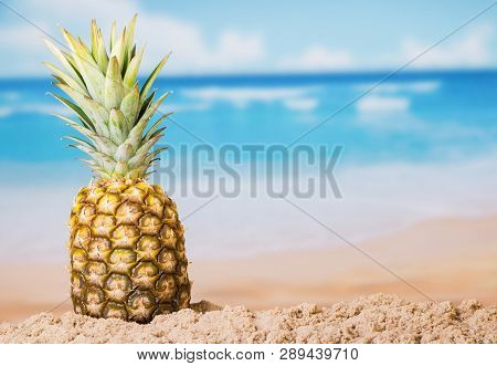 Fresh Juicy Pineapple In The Sand Of A Hot Sunny Beach