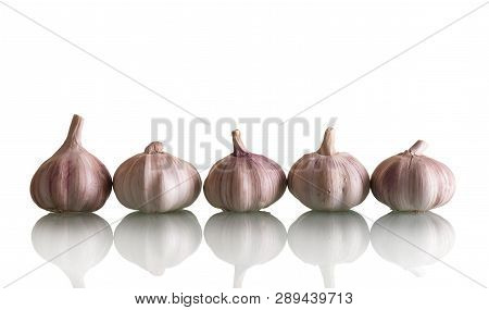 Five Heads Fresh Beautiful Garlic Isolated On White Background