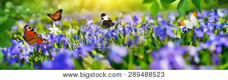 Joyful Little Paradise With Blue Bells On A Green Meadow In Spring, With Butterflies Flying Around,