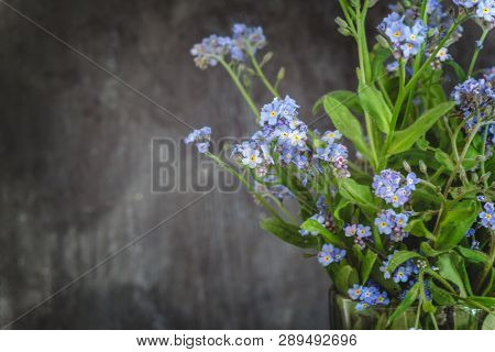 Forget-me-not Flowers In A Vase On A Dark Background