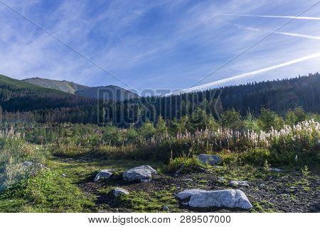 Beautiful Landscape Near Mengusovska Valley. High Tatra Mountains. Slovakia.