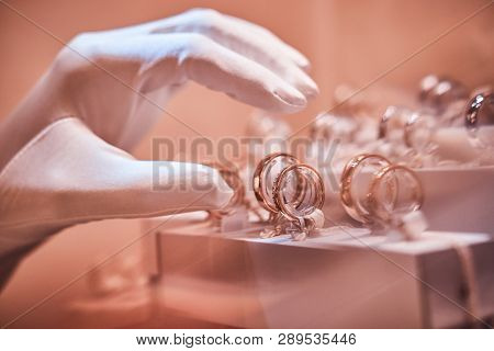 Hand In Gloves Takes To Exclusive Rings On The Showcase Of A Luxury Jewelry Store