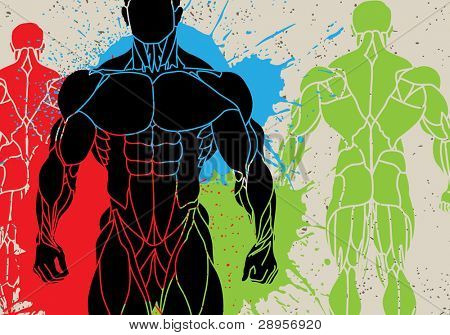 vector illustration of a strong man silhouette