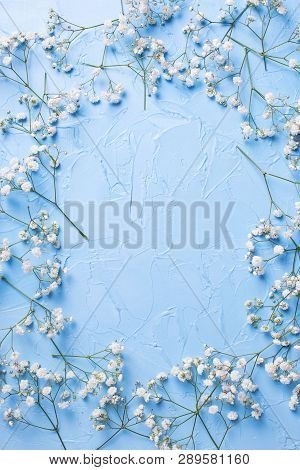Frame  From Tender  White Gypsofila  Flowers On Blue Textured Background. Top View. Flat Lay. Place