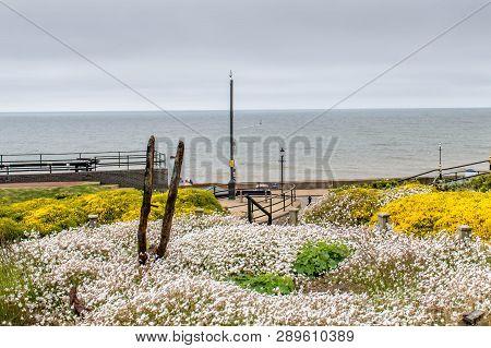 A View Of Hunstanton Beach From The Adjacent Garden