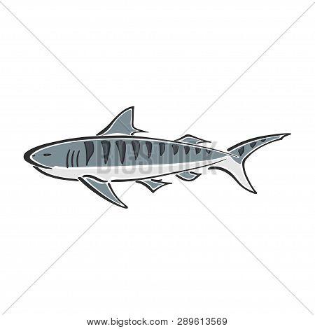 Tiger Shark Character Abstract Ink Hand Drawn Vector Logo Cartoon. Simplified Color Illustration. Oc