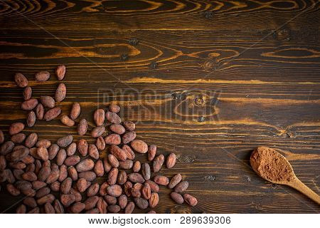 Cocoa Beans And Cocoa Powder In Wooden Spoon On Old Natural Wooden Background.