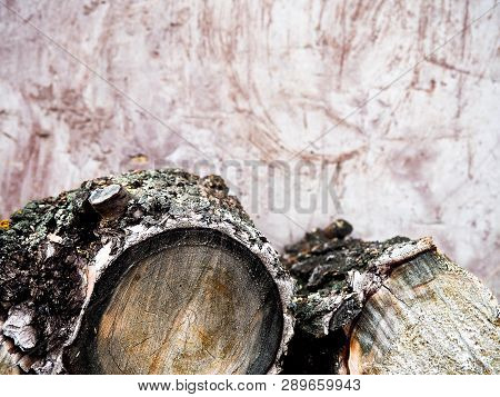 Chopped Firewood Logs In Pile. Nature Background. Wood Preparation. Large Pile Of Fresh Cut Wood Aga