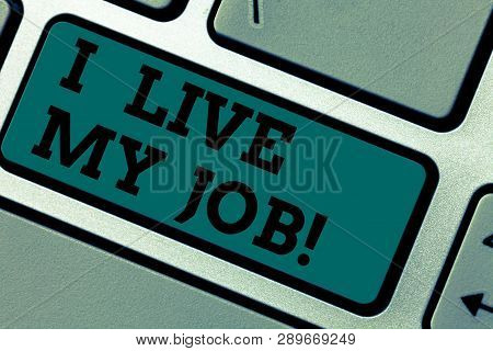 Conceptual Hand Writing Showing I Live My Job. Business Photo Showcasing Be Immerse In And Love The
