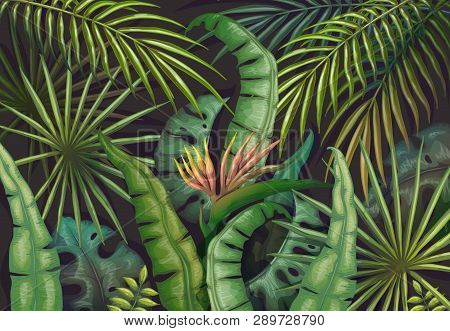 Palm Leaves Background. Tropical Summer Jungle, Exotic Plant Flyer, Green Exotic Forest Poster. Vect