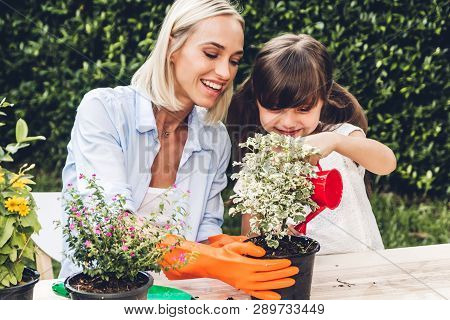 Mother With Little Daughter Having Fun And Planting Flowers In Pot With Soil Together,daughter Takin