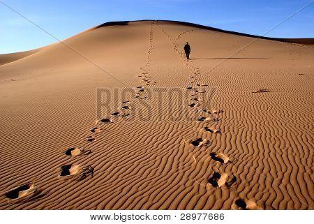 Sands dunes on gobi desert in Mongolia