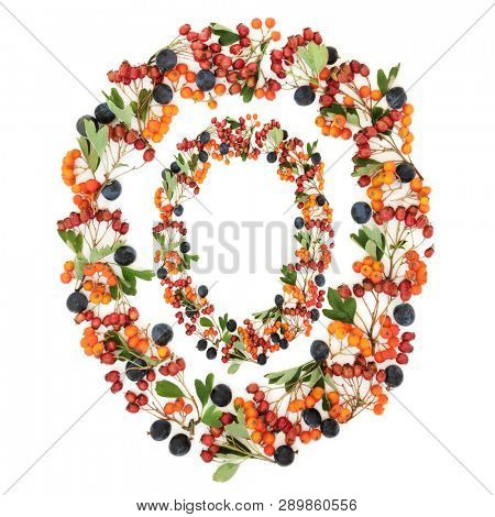 Abstract autumn berry wreath with sloe, hawthorn and rowan berries on white background with copy space.