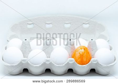 A Box Of White Eggs An One Orange Egg