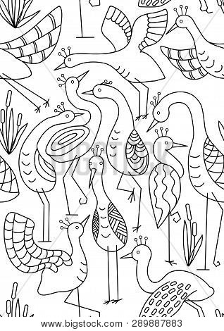 Background For Coloring, Lines, Herons, Wader. Vector Seamless Pattern With Cranes Isolated On White