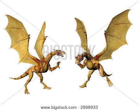 Dragon Pair