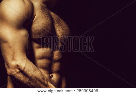 Six Pack, Abs, Strong Chest. Sexy Muscular Male Torso Six Packs, Ab. Athletic Man Training With Nake