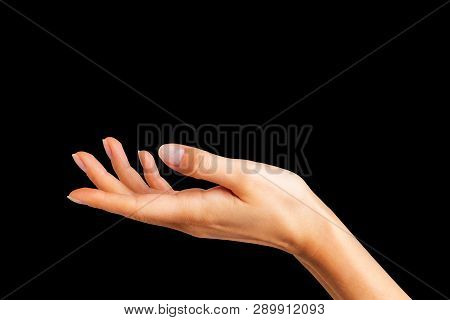 Woman Showing Open Hand Taking Or Showing Something
