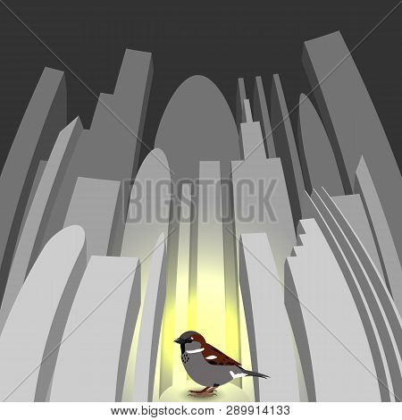 World Sparrow Day. Sparrow On The Background Of The Cityscape. Concept Of Ecological Events. Protect