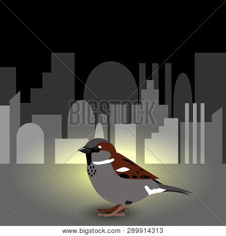 World Sparrow Day. Sparrow On The Cityscape On The Background. Concept Of Ecological Events. Protect