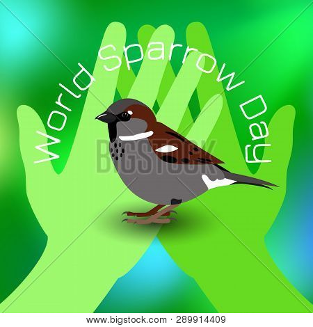 World Sparrow Day. Sparrow On Green Palms. Green Blur Background. Concept Of Ecological Events. Prot