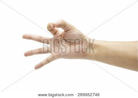 Hand Collection Of Count Numeric Nine Sign Language  . Isolated On White Background With Clipping Pa