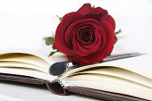 Lovely red rose and pen on a classic note book poster