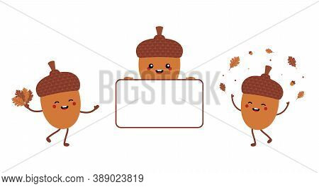 Set, Collection Of Cute Cartoon Acorn Characters Smiling, Dancing, Holding Blank, Empty Card. Acorn