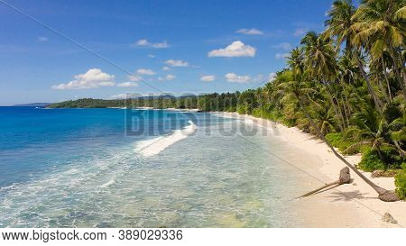 Beautiful Beach, Palm Trees By Turquoise Water View From Above. Philippines, Mindanao. Summer And Tr