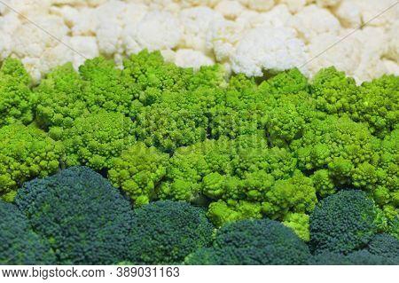Pattern Of Broccoli, Cauliflower And Roman Cauliflower. Set Of Fresh And Ripe Cabbage. Healthy Veget