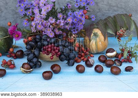Chestnuts Are Scattered Against A Blue Background. Pumpkins, Wild Rose, Autumn Flowers And Leaves Li