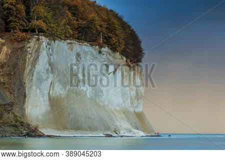 Chalk Cliffs In Jasmund National Park On The Island Of Ruegen. Pirate Bay In The Morning. Fallen Tre