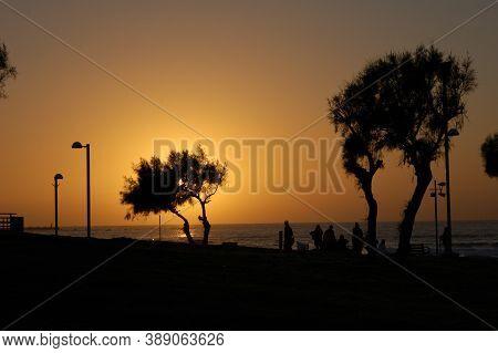 Purple Red Sunset, Contour, Profile, Outline Sea Recreation Area Trees