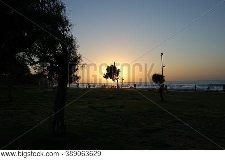 Sea Coastline, Contour, Profile, Silhouette, Outline, Sea Recreation Area, Trees Sunset On The Sea E