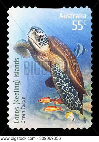 Australia - Circa 2009: A Stamp Printed In Australia Shows Green Turtle At Cocos (keeling) Islands,