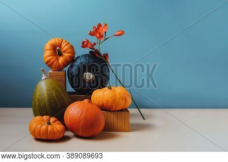 Orange And Green Decorative Pumpkins With Flower In Creative Autumn Composition On Trendy Earth Tone
