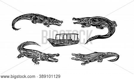 Hand Drawn Crocodile Sketch Collection. Vector Black Ink Drawing Isolated On White Background. Graph