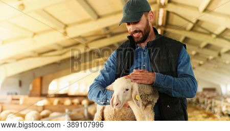 Portrait Of Young Handsome Caucasian Man Farmer In Cap Smiling To Camera And Holding Lamb In Hands I