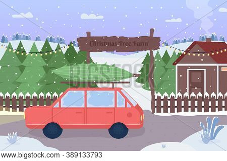 Christmas Tree Farm Flat Color Vector Illustration. Red Car With Packed Evergreen Spruce. Road Cover