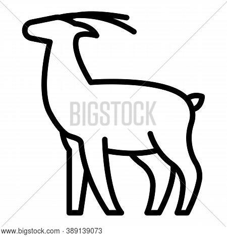 Exotic Gazelle Icon. Outline Exotic Gazelle Vector Icon For Web Design Isolated On White Background