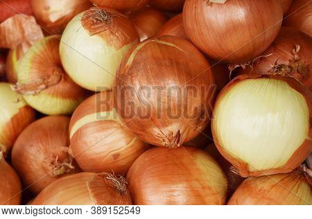 Fresh Yellow Bulb Onions, Onions Background Close Up