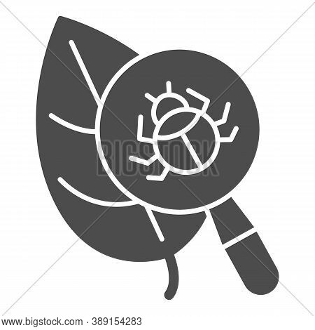 Beetle Under Magnifying Glass On Leaf Solid Icon, Allergy Concept, Insect Under Magnifier Sign On Wh