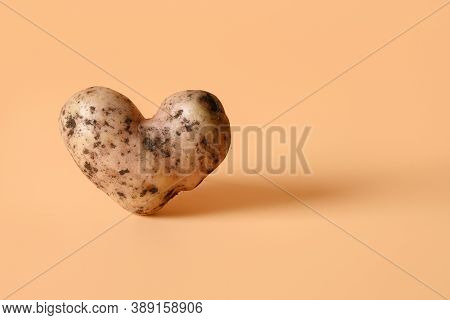 Abnormal Potato In Shape Of Heart On Beige Background. Concept Love Organic Natural Homegrown Ugly V