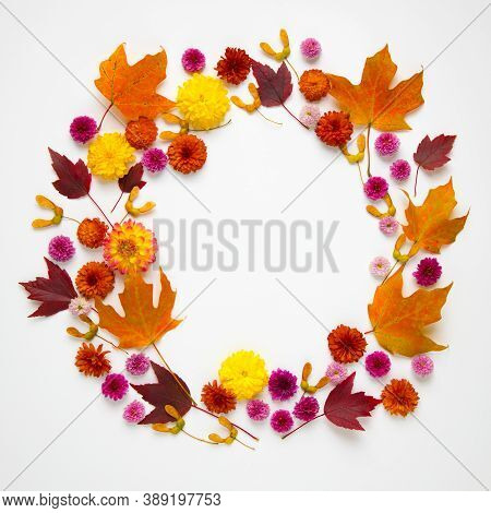 Autumn Natural Frame From Leaves, Flowers And Seeds.