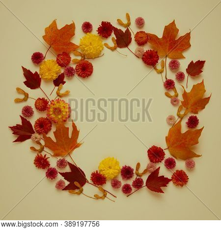 Round Frame From Autumn Leaves And Flowers.