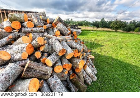 Chopped And Stacked Up Dry Firewood At The Countryside. Stock Pile Of Timber, Chopped Down Trees At
