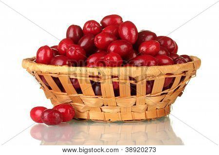 fresh cornel berries in wickerbasket isolated on white poster