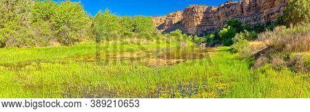 A Marshy Wetland Downstream From Stillman Lake In The Upper Verde River Wildlife Area Near Paulden A